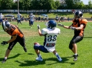 A-Jugend 06.07.2019 Rangers vs.. Straubing Spiders_5